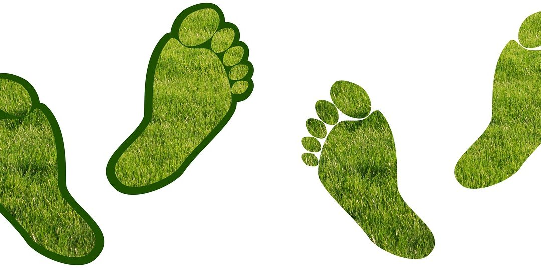 Ecologische voetafdruk: hoe kan ik het verschil maken?